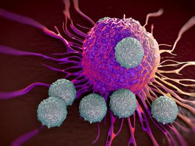 Journal of Oncology and Cancer Research